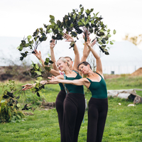 Bees and Friends Festival by Ballet Vermont
