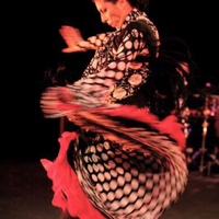 Special Workshop: Flamenco with Briseyda Zárate