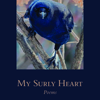 Book launch celebration for My Surly Heart: Poems