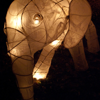 Light Up The Hill! Lanterns With Andrea Myklebust