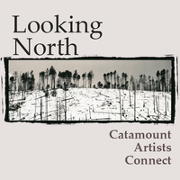 Looking North - Catamount Artists Connect