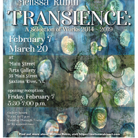 Transience: A Selection of Work 2014 - 2019 (The Artwork of Melissa Rubin)