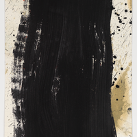 Pat Steir: Drawings & prints with video by Molly Davies