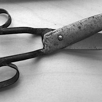 The Pivot and the Blade (an intimate look at scissors)